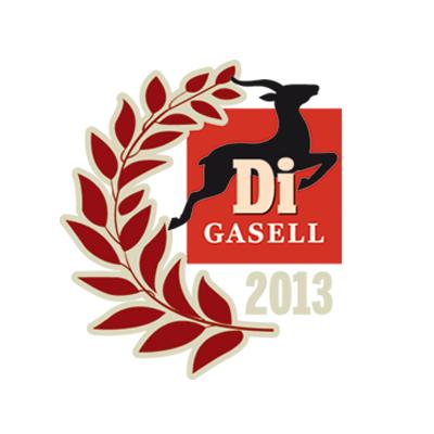Årets Gasell 2013